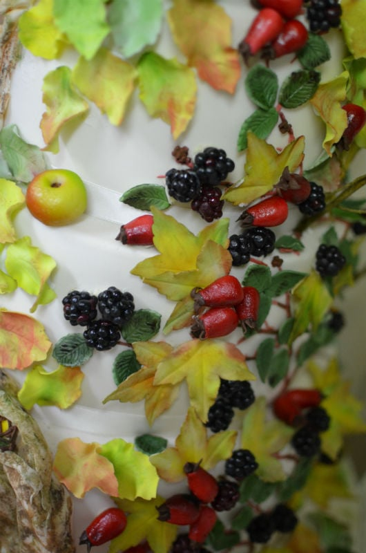 Close up of Brambly Hedge sugar berries.