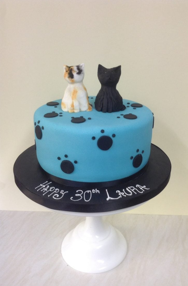Cat cake turquoise